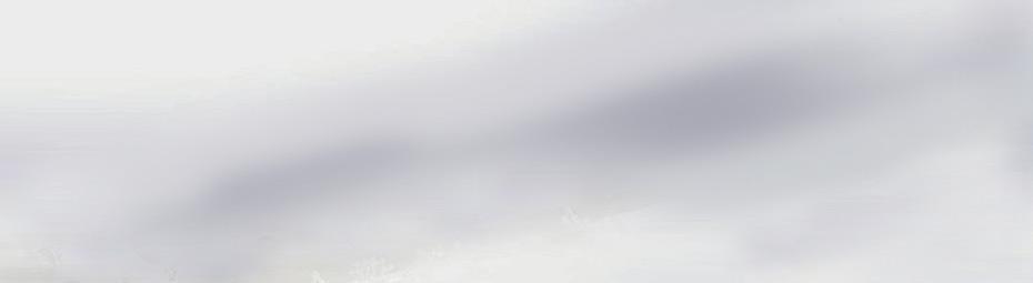 banner-pigwaves-bkg